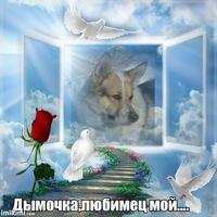 Liybov аватар