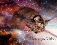 Долли_Love ♥ аватар