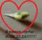 LybimchikKesha аватар