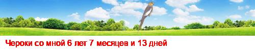 Венгерский агар (мадьяр агар, мадьярский агар), или венгерская борзая 03724